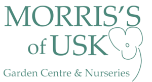 Web banner Morris's (1)