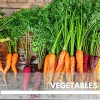 Vegetables Block Plants page