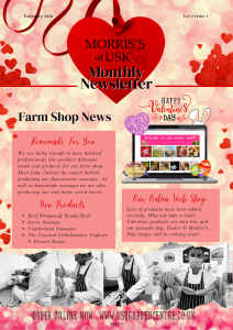 Newsletter Feb 2021